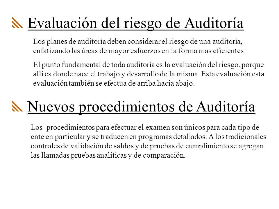 Evaluación del riesgo de Auditoría