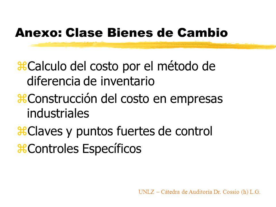 Anexo: Clase Bienes de Cambio