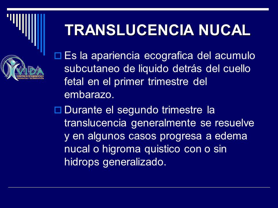 TRANSLUCENCIA NUCAL Es la apariencia ecografica del acumulo subcutaneo de liquido detrás del cuello fetal en el primer trimestre del embarazo.