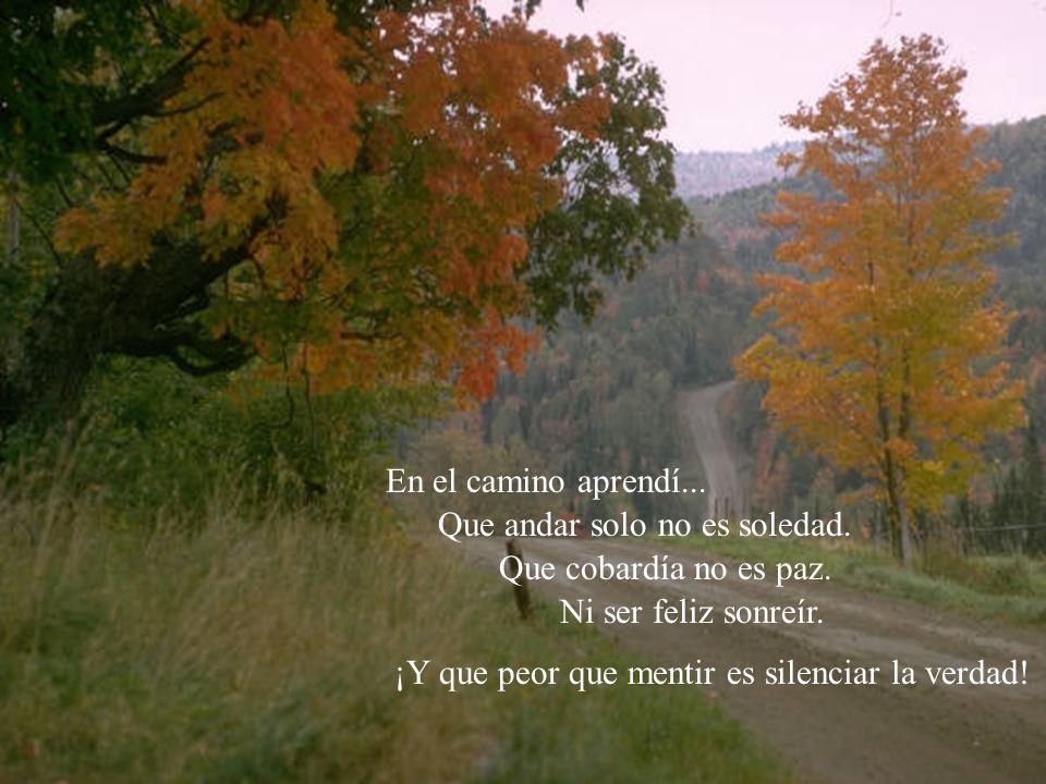 En el camino aprendí... Que andar solo no es soledad. Que cobardía no es paz. Ni ser feliz sonreír.