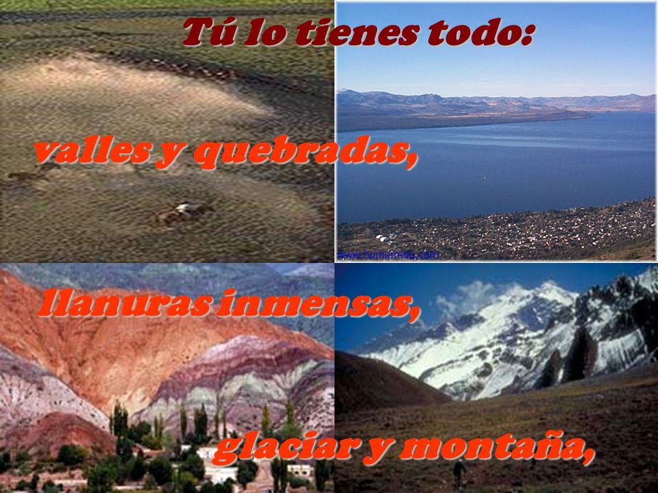 Tú lo tienes todo: valles y quebradas, llanuras inmensas, glaciar y montaña,