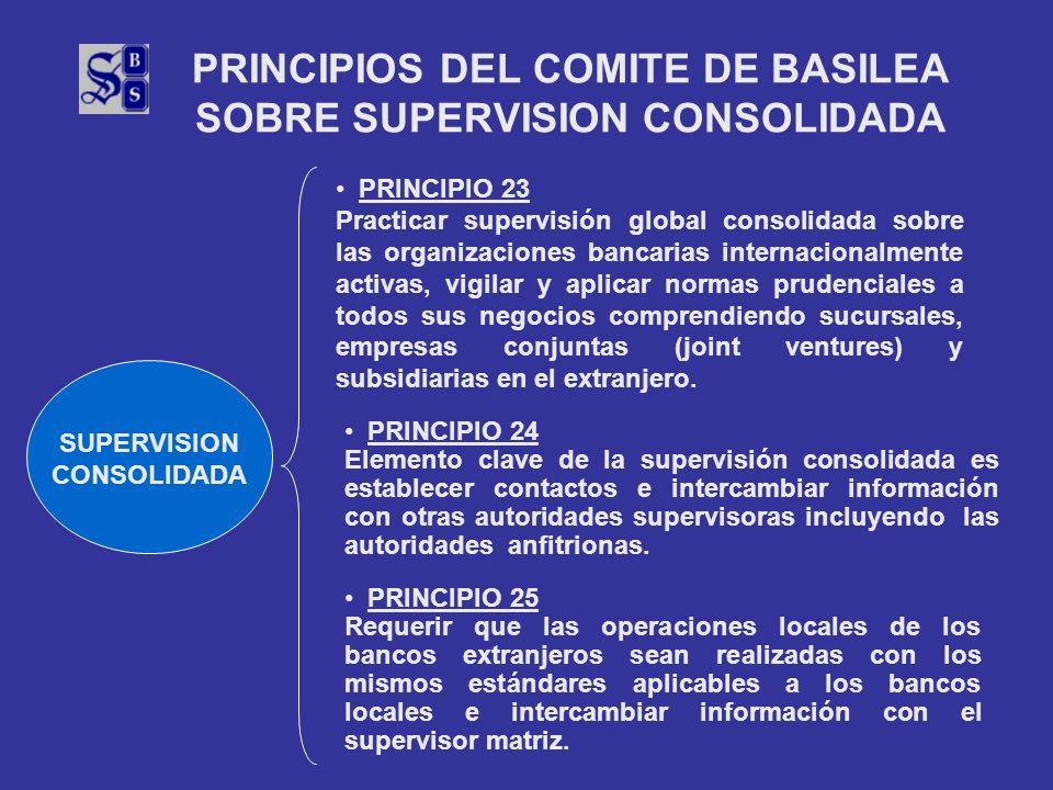 PRINCIPIOS DEL COMITE DE BASILEA SOBRE SUPERVISION CONSOLIDADA