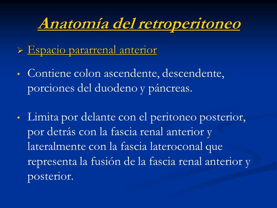 Anatomía del retroperitoneo