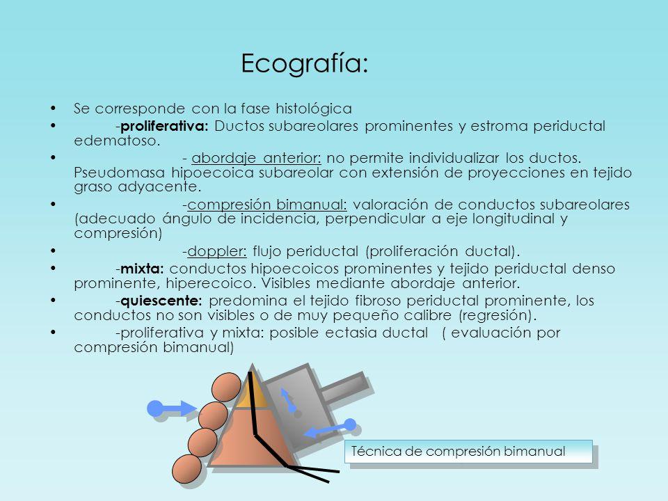 Ecografía: Se corresponde con la fase histológica