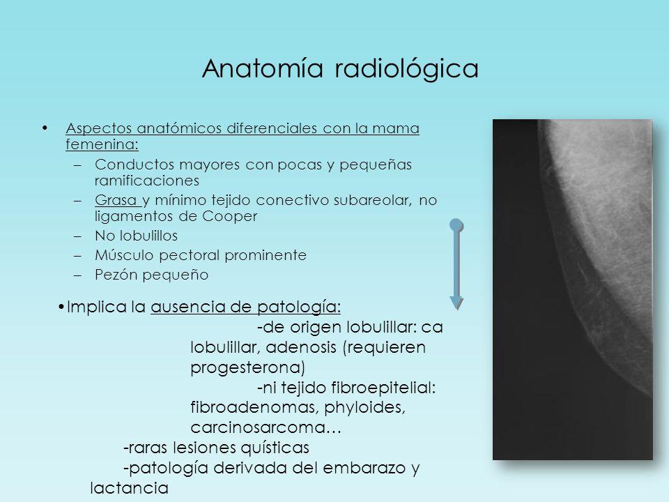 Anatomía radiológica Implica la ausencia de patología: