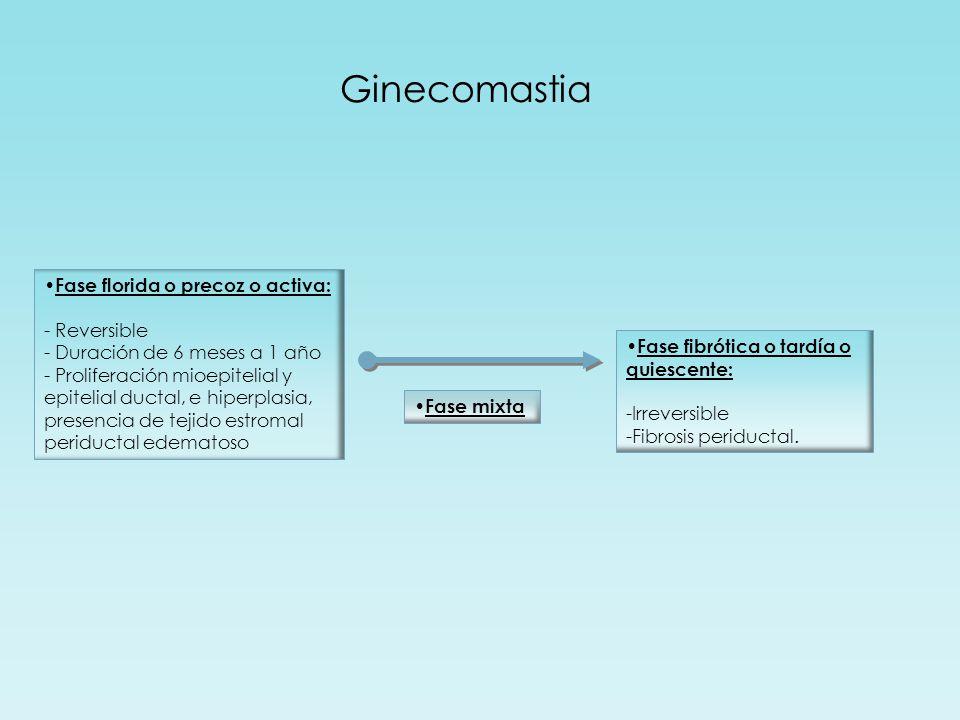 Ginecomastia Fase florida o precoz o activa: - Reversible