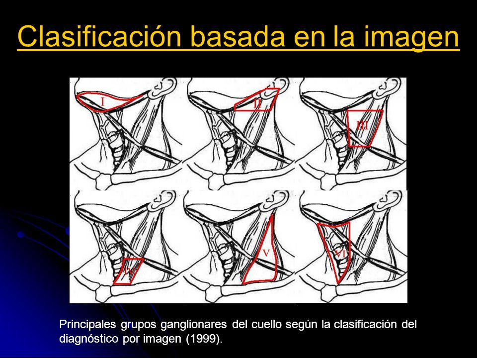 Clasificación basada en la imagen