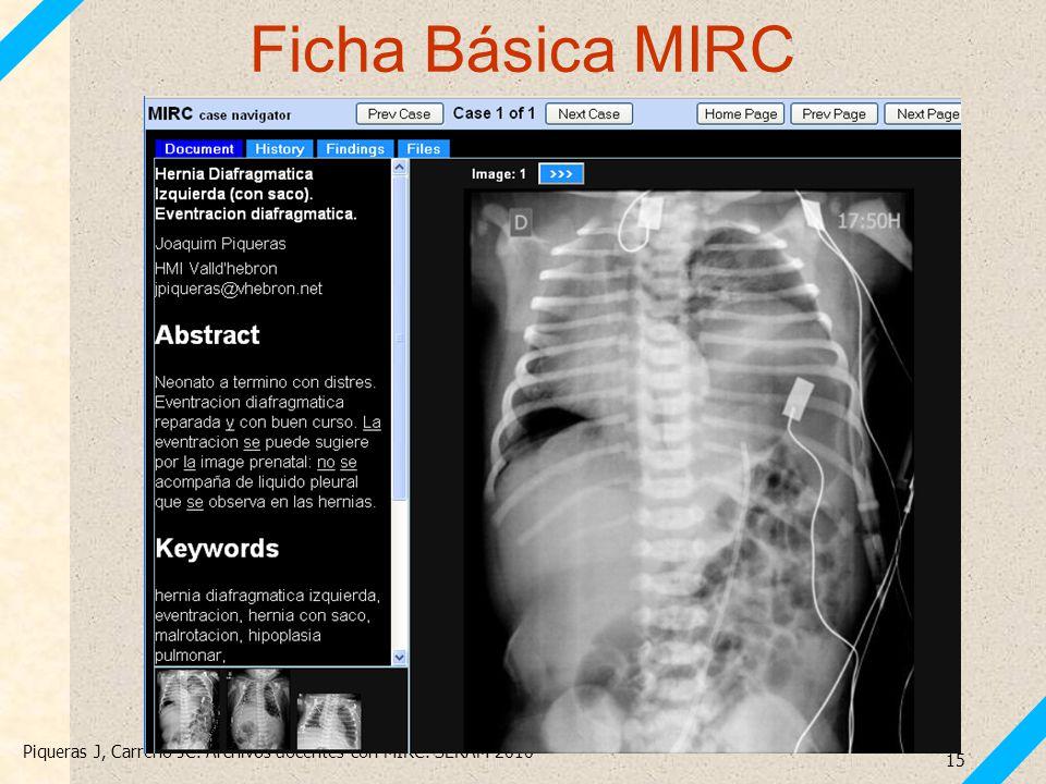 Ficha Básica MIRC