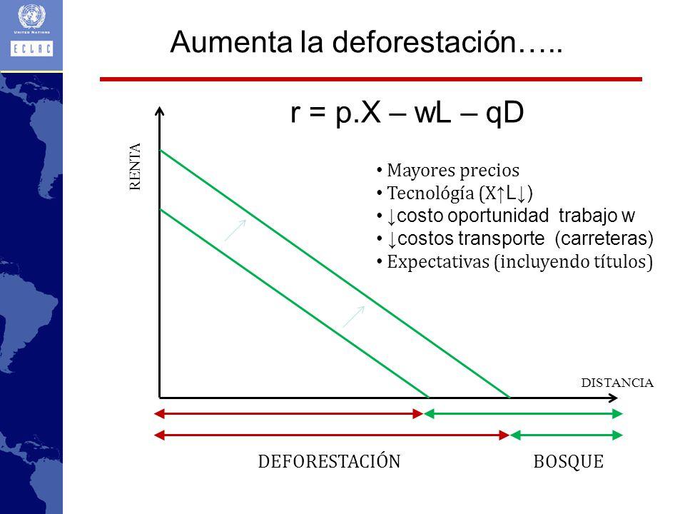 Aumenta la deforestación…..