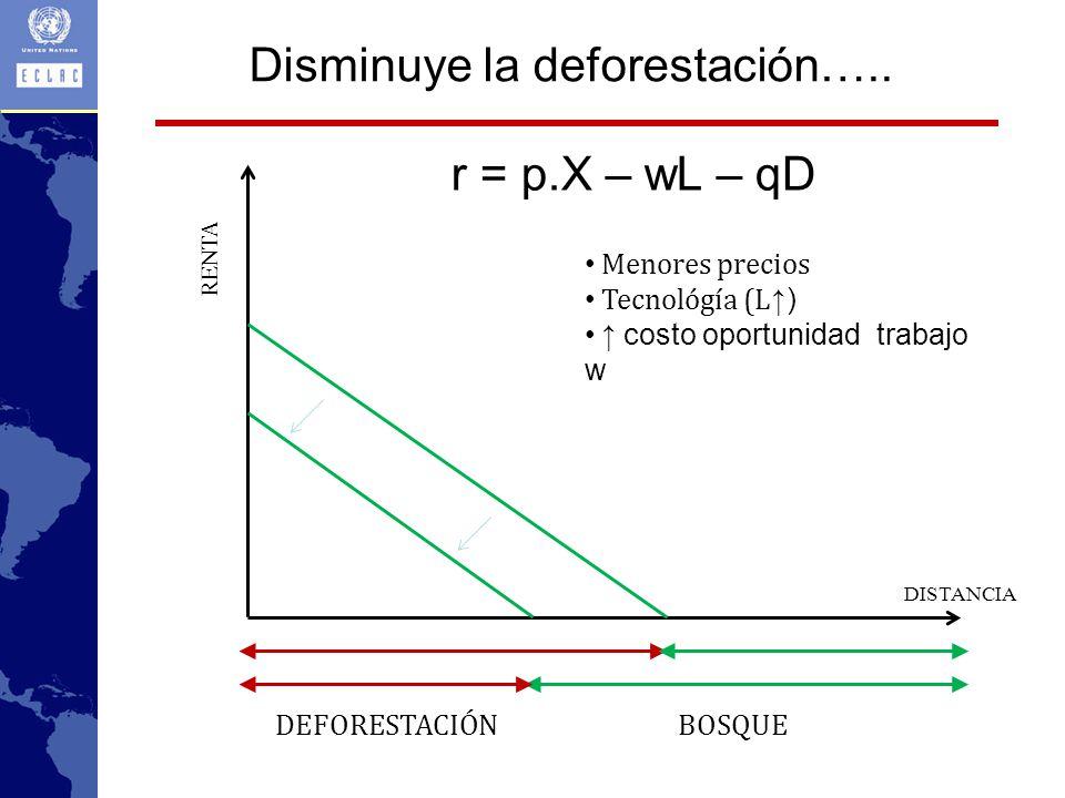 Disminuye la deforestación…..