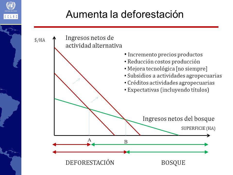 Aumenta la deforestación