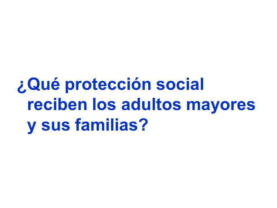 ¿Qué protección social reciben los adultos mayores y sus familias