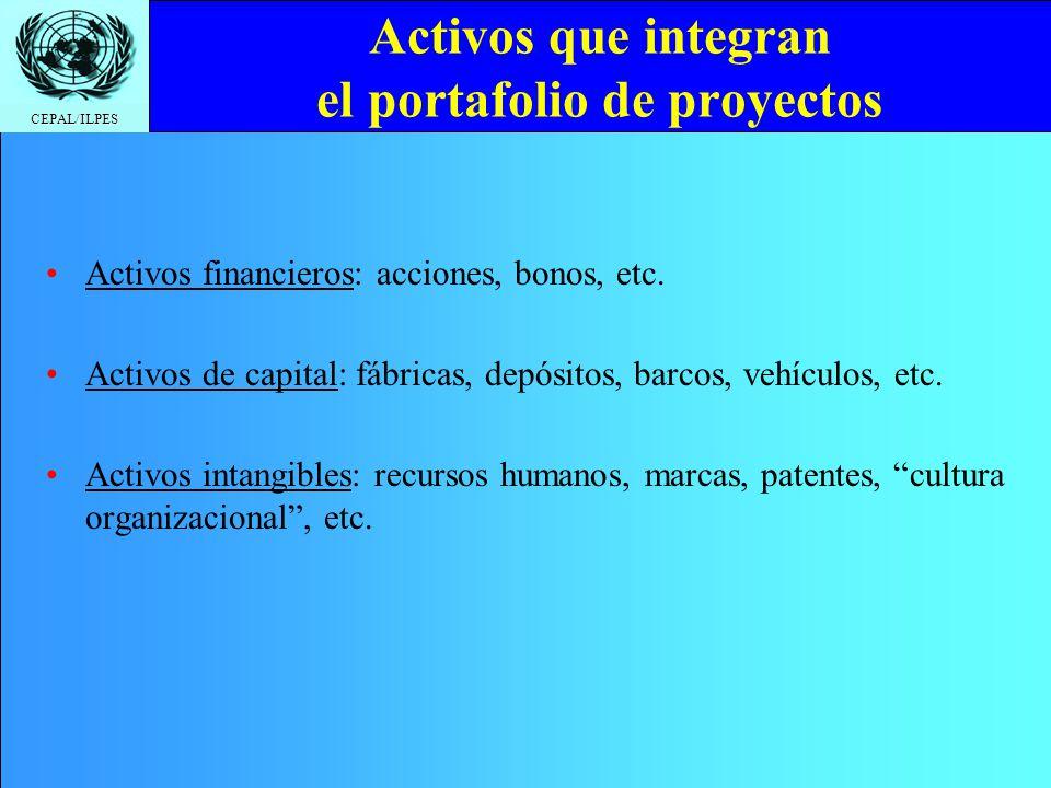 Activos que integran el portafolio de proyectos