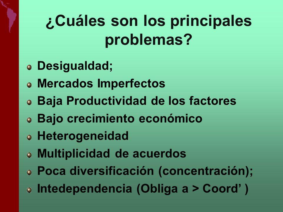 ¿Cuáles son los principales problemas