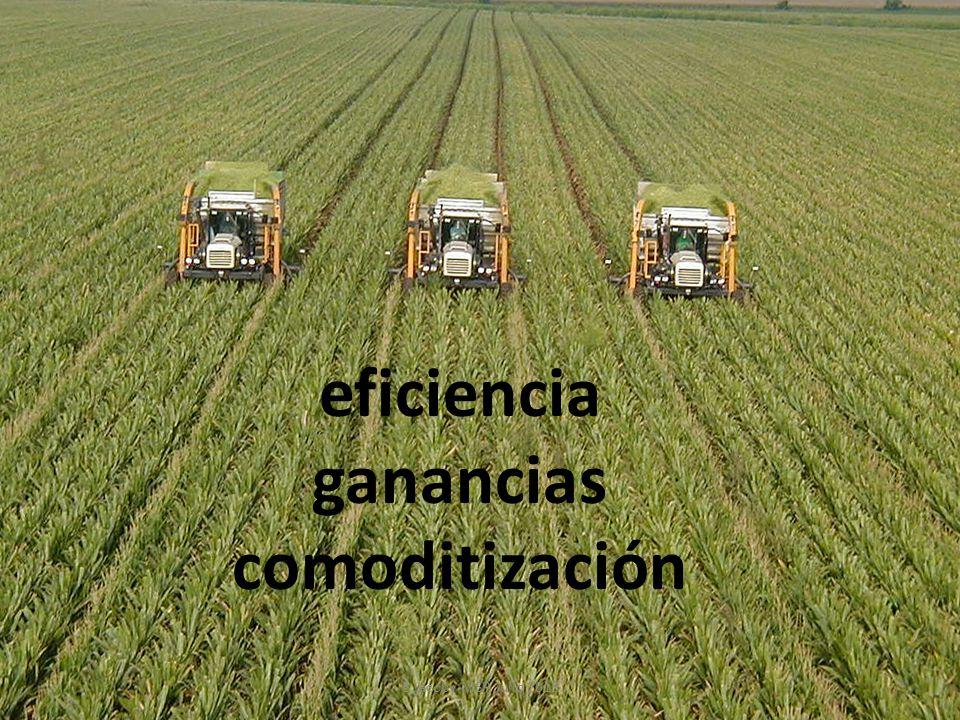 eficiencia ganancias comoditización