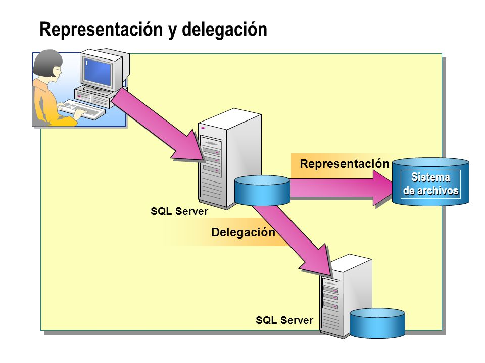 Representación y delegación