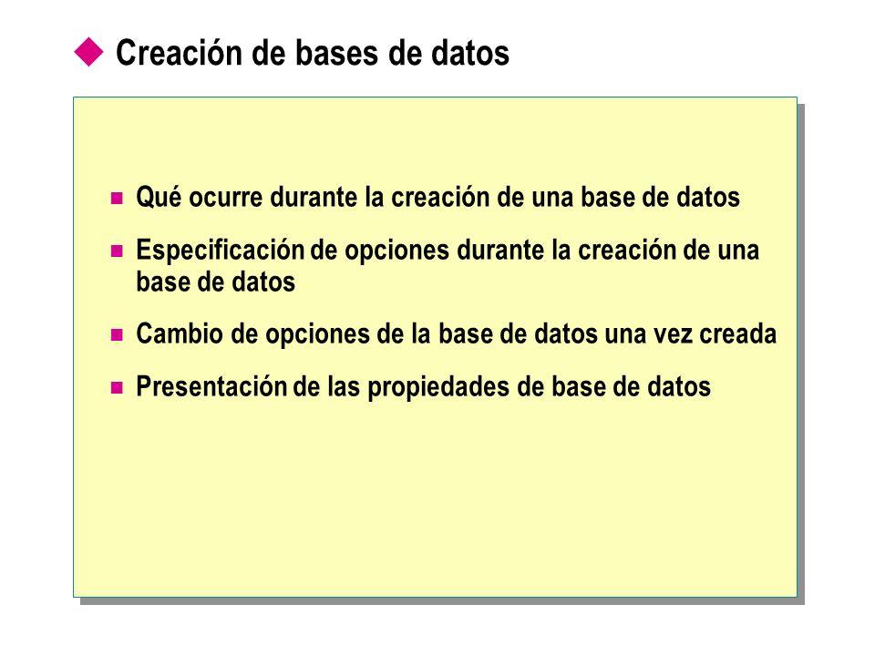 Creación de bases de datos