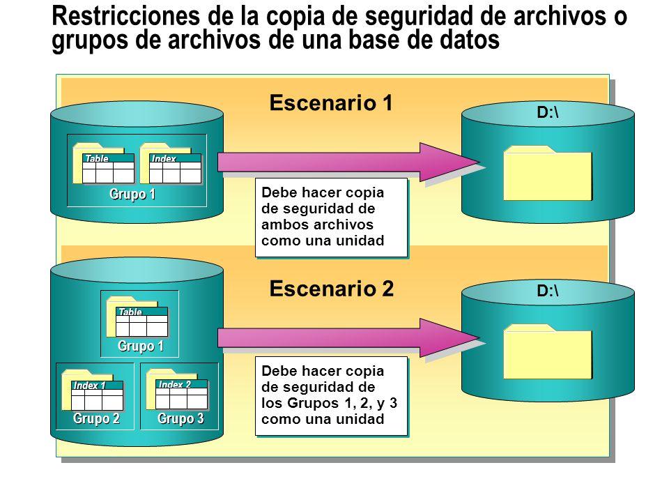 Restricciones de la copia de seguridad de archivos o grupos de archivos de una base de datos