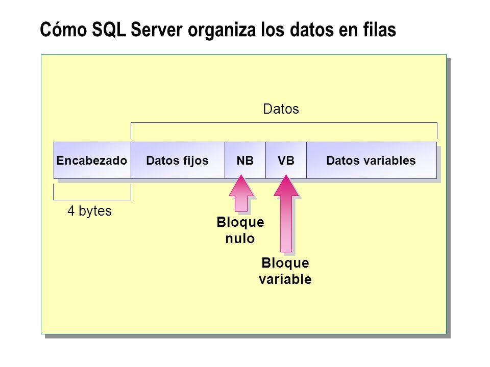 Cómo SQL Server organiza los datos en filas