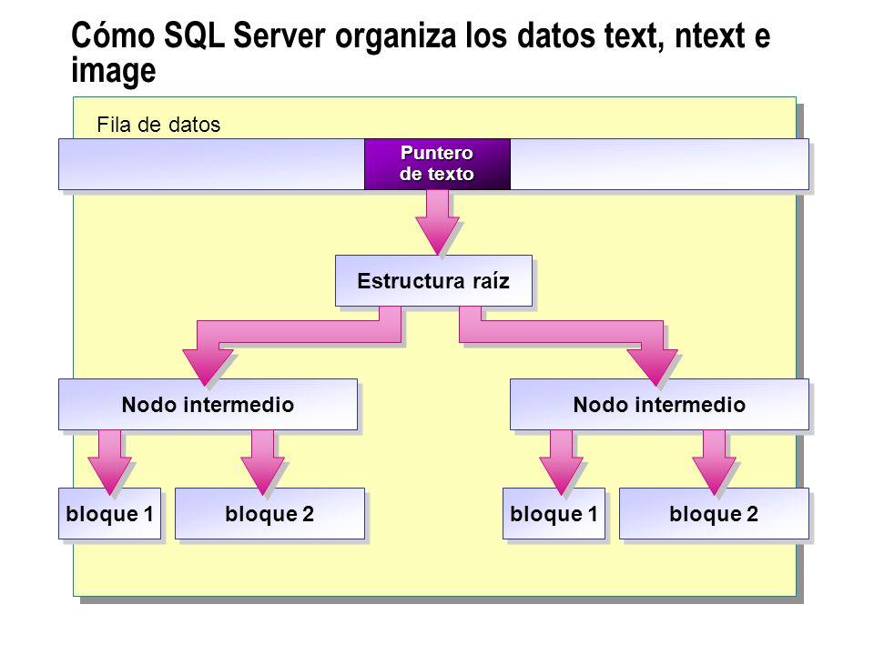Cómo SQL Server organiza los datos text, ntext e image
