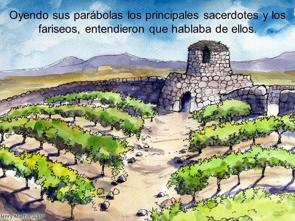 Oyendo sus parábolas los principales sacerdotes y los fariseos, entendieron que hablaba de ellos.