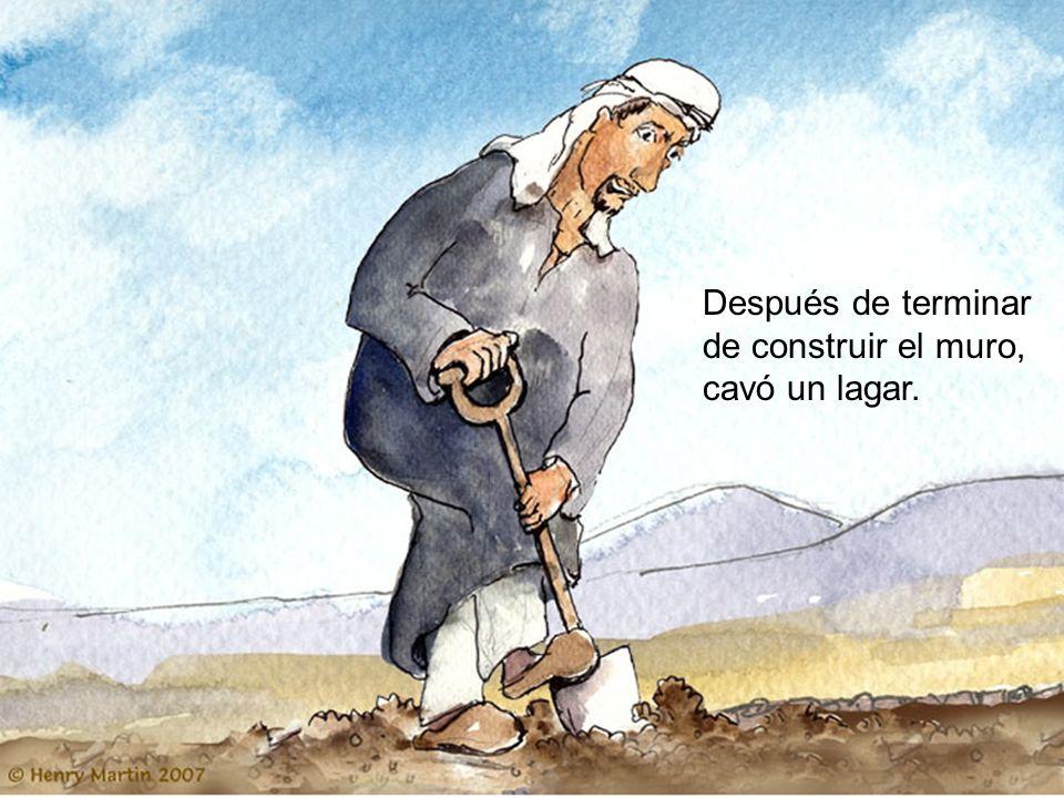 Después de terminar de construir el muro, cavó un lagar.
