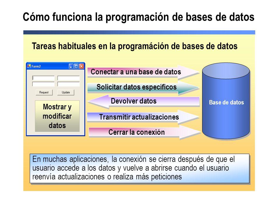 Cómo funciona la programación de bases de datos
