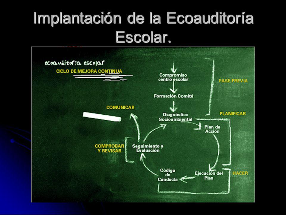 Implantación de la Ecoauditoría Escolar.