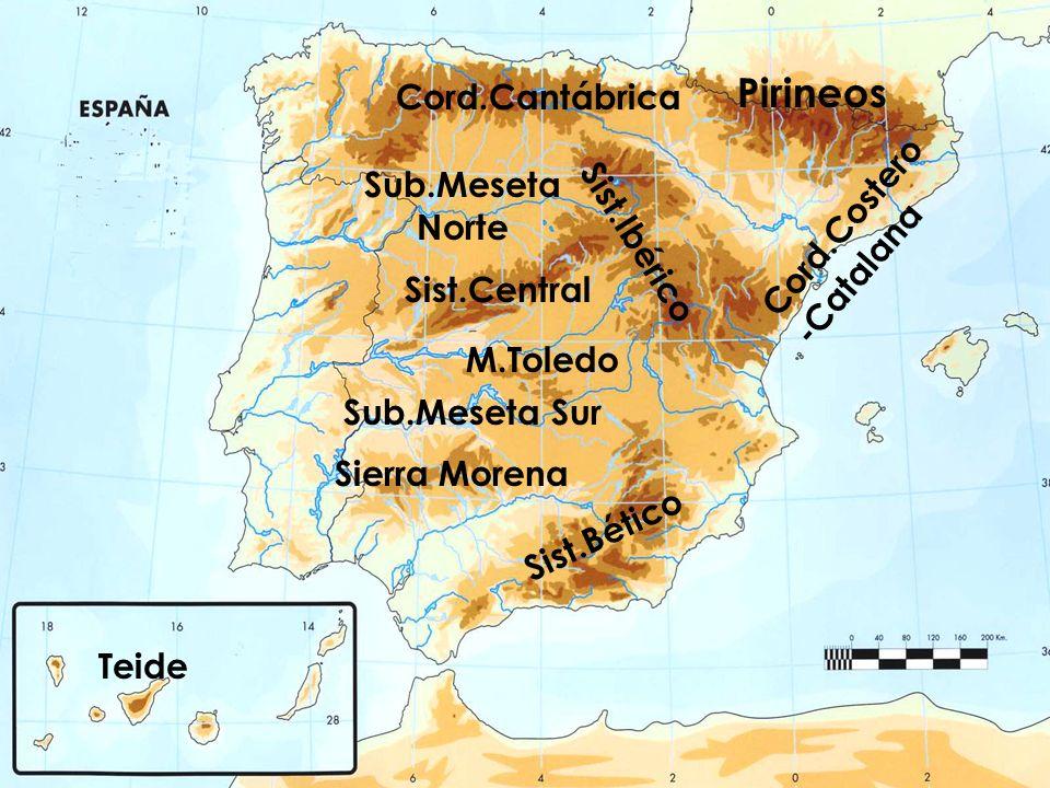 Pirineos Cord.Cantábrica Sub.Meseta Cord.Costero-Catalana Norte