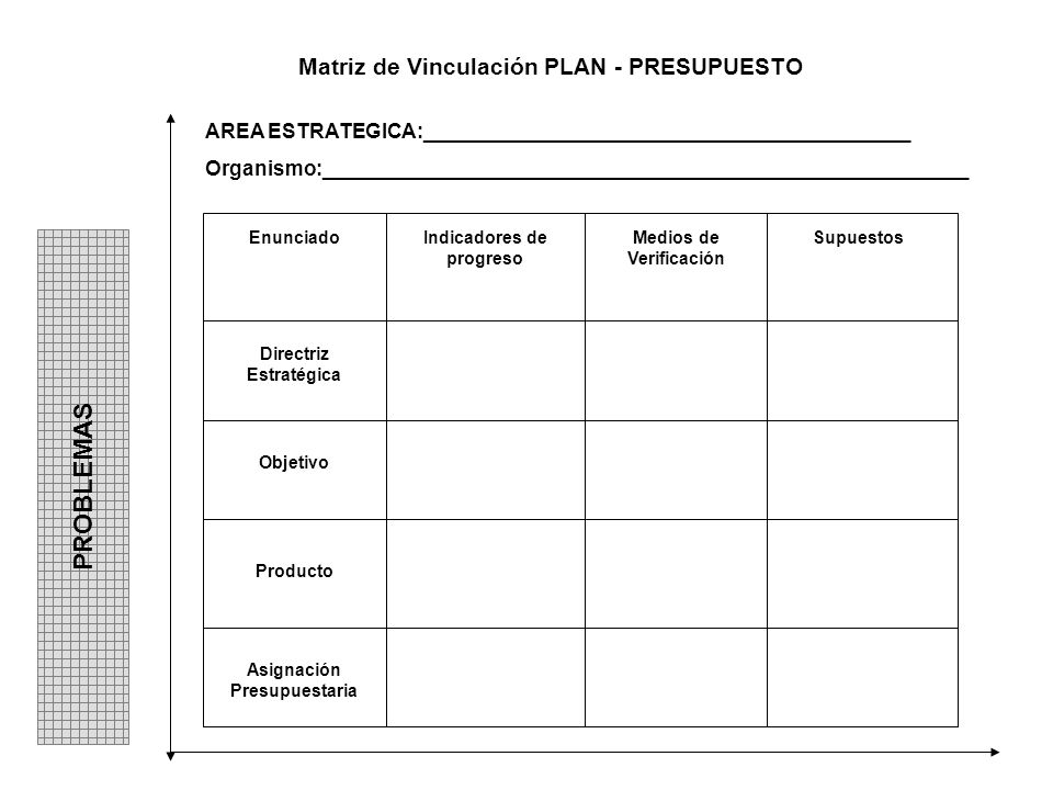 PROBLEMAS Matriz de Vinculación PLAN - PRESUPUESTO