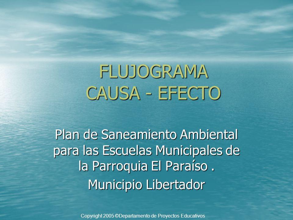 FLUJOGRAMA CAUSA - EFECTO