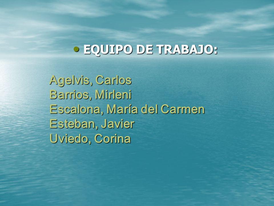 EQUIPO DE TRABAJO: Agelvis, Carlos Barrios, Mirleni Escalona, María del Carmen Esteban, Javier Uviedo, Corina.