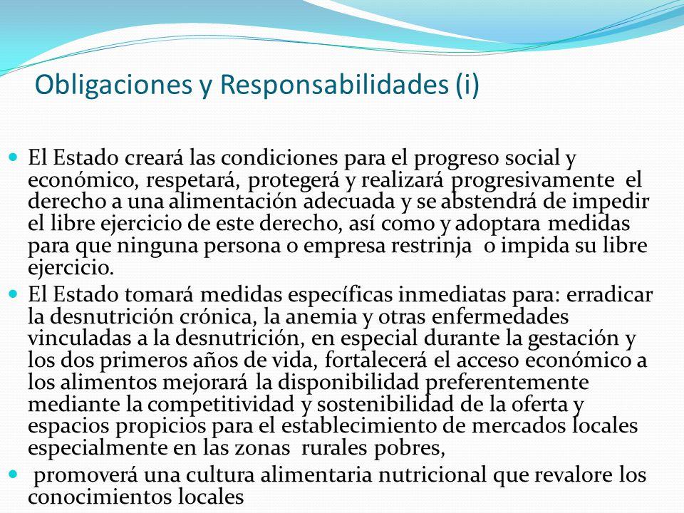 Obligaciones y Responsabilidades (i)