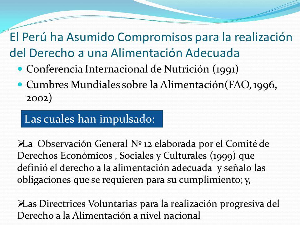 El Perú ha Asumido Compromisos para la realización del Derecho a una Alimentación Adecuada