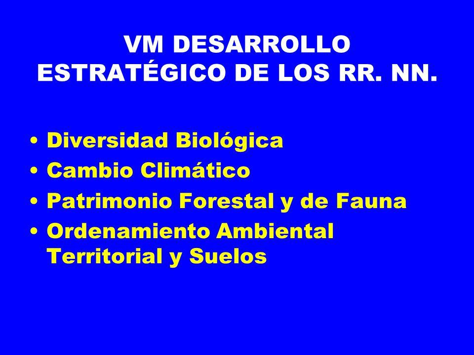 VM DESARROLLO ESTRATÉGICO DE LOS RR. NN.