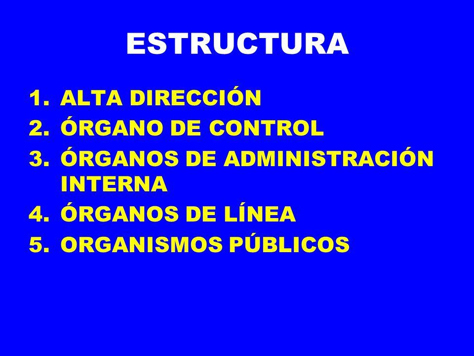 ESTRUCTURA ALTA DIRECCIÓN ÓRGANO DE CONTROL