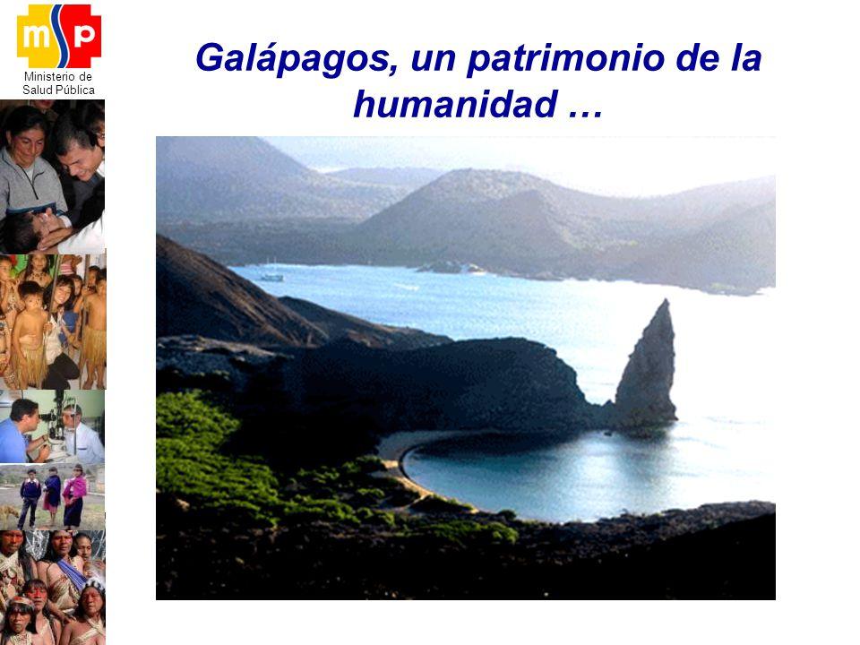 Galápagos, un patrimonio de la humanidad …