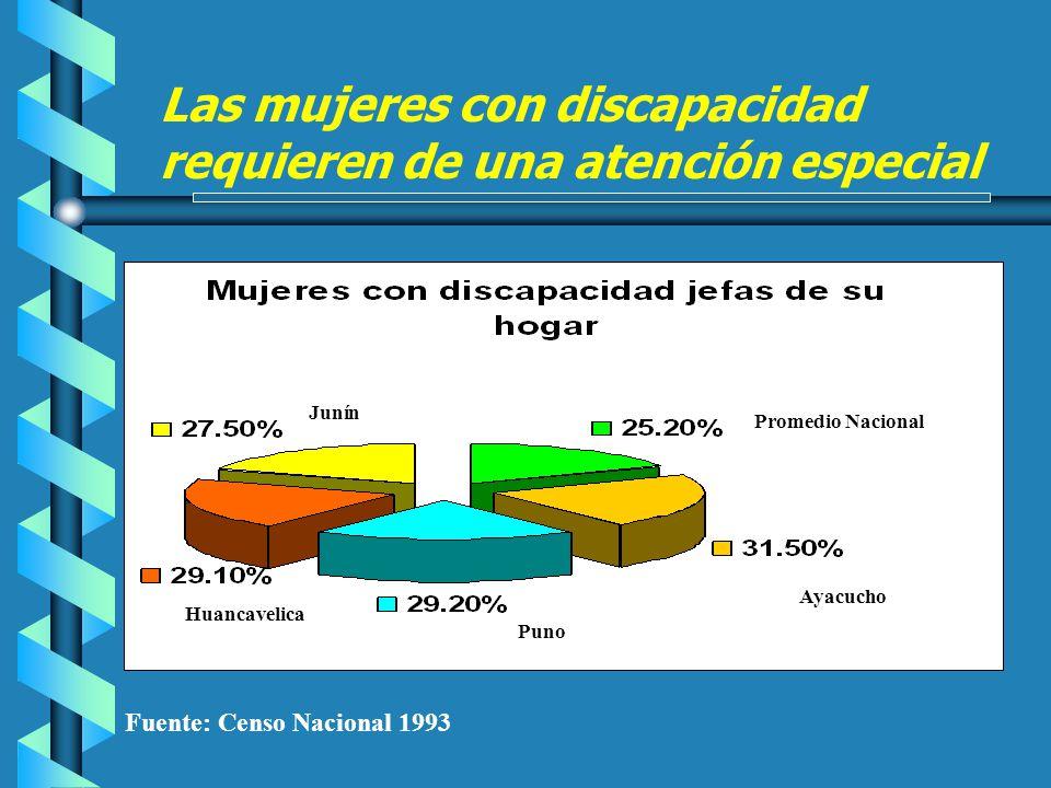 Fuente: Censo Nacional 1993