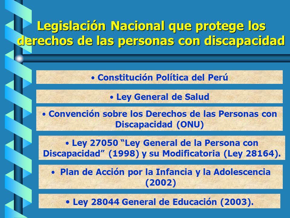Legislación Nacional que protege los derechos de las personas con discapacidad