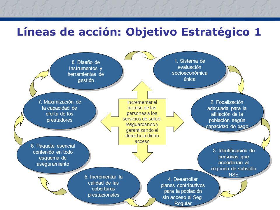 Líneas de acción: Objetivo Estratégico 1