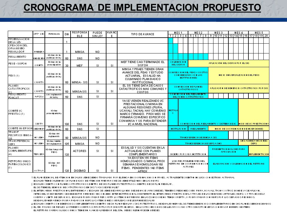 CRONOGRAMA DE IMPLEMENTACION PROPUESTO