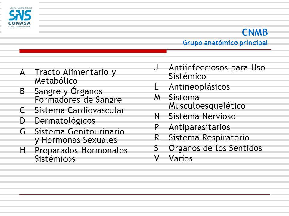 CNMB Grupo anatómico principal
