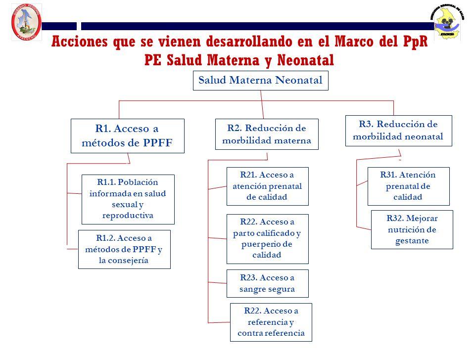 Acciones que se vienen desarrollando en el Marco del PpR PE Salud Materna y Neonatal