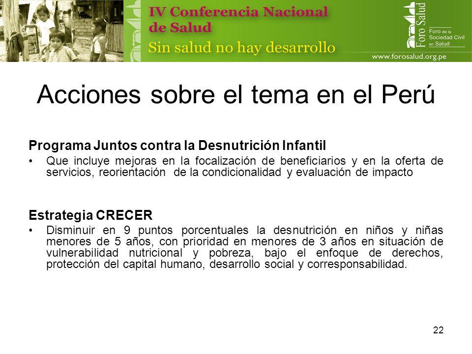 Acciones sobre el tema en el Perú