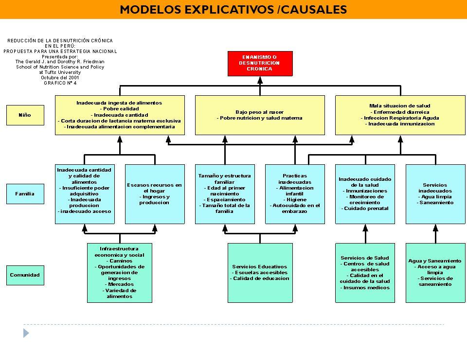 MODELOS EXPLICATIVOS /CAUSALES