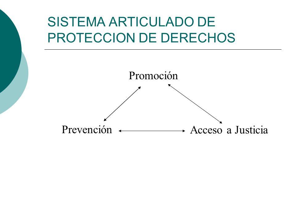 SISTEMA ARTICULADO DE PROTECCION DE DERECHOS
