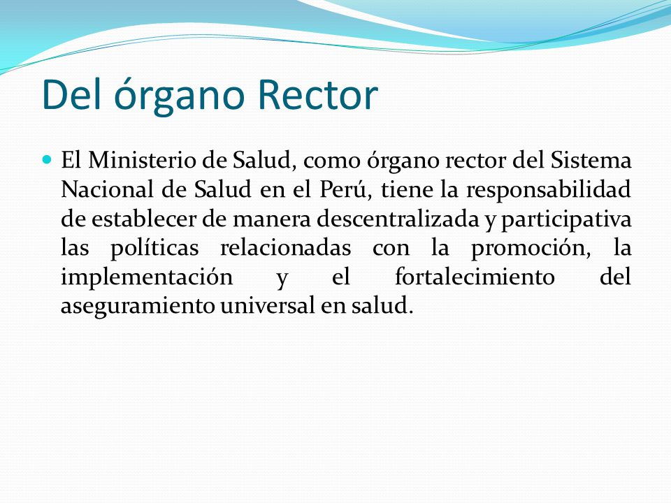 Del órgano Rector