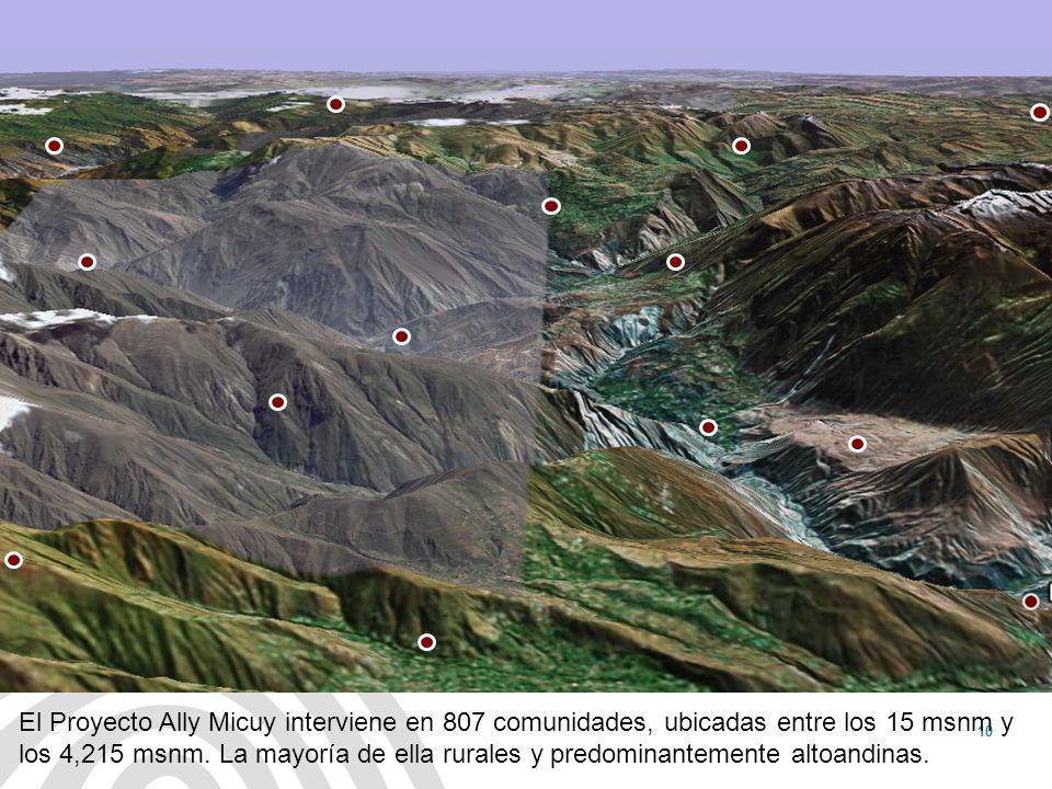 El Proyecto Ally Micuy interviene en 807 comunidades, ubicadas entre los 15 msnm y los 4,215 msnm. La mayoría de ella rurales y predominantemente altoandinas.