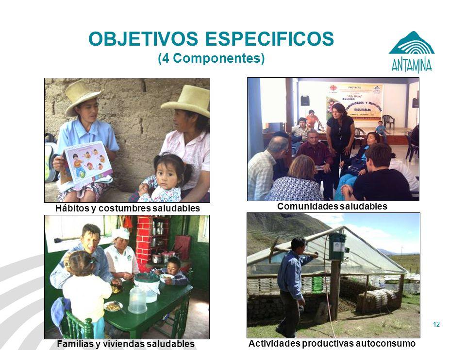 OBJETIVOS ESPECIFICOS (4 Componentes)