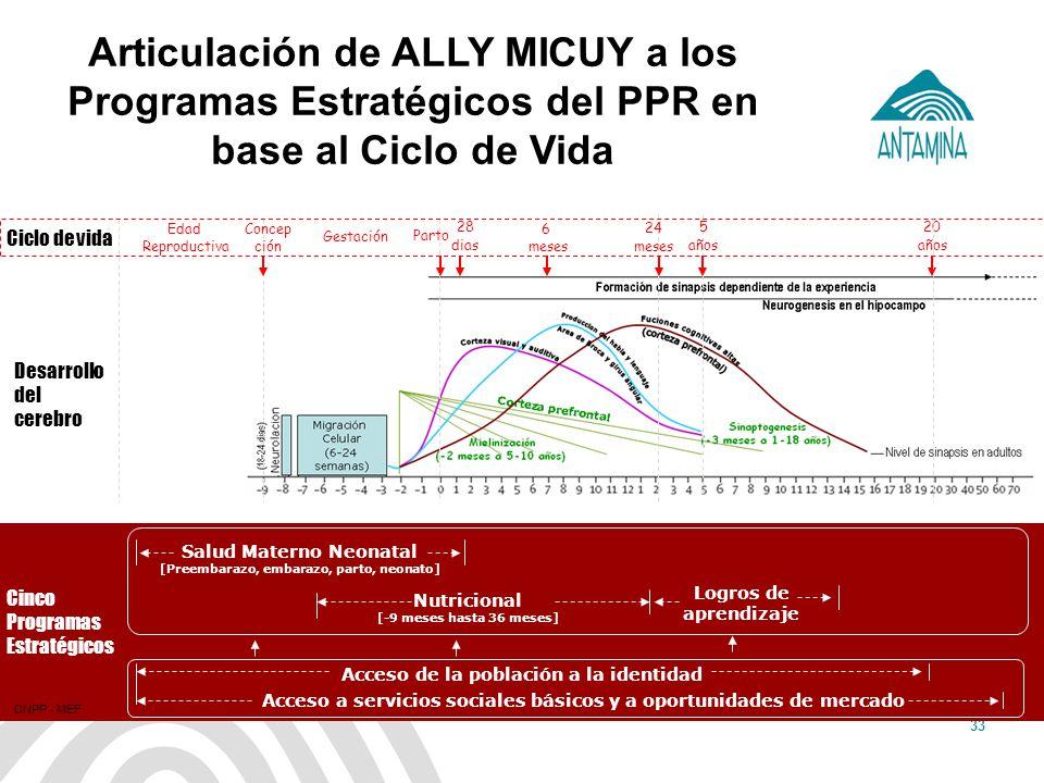 Articulación de ALLY MICUY a los Programas Estratégicos del PPR en base al Ciclo de Vida